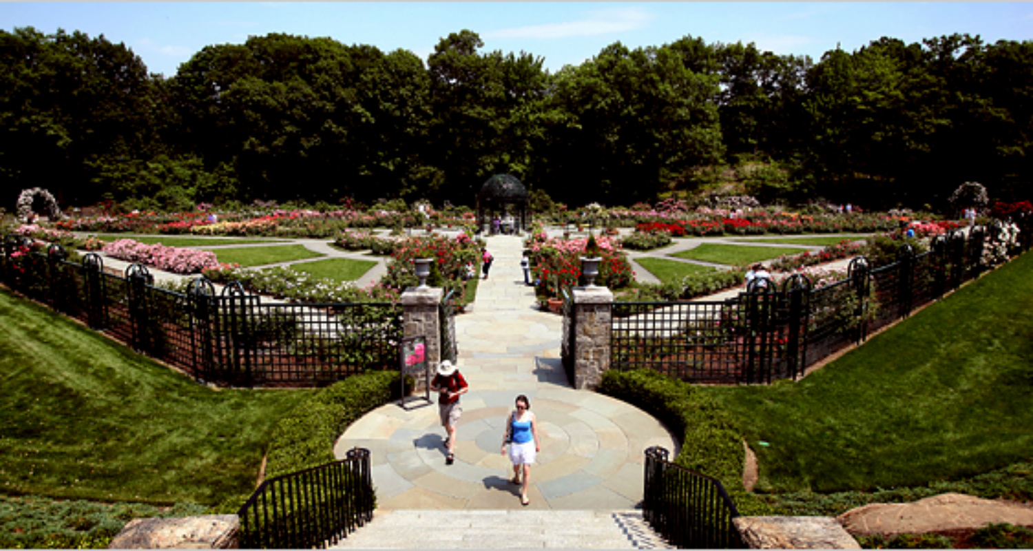 Nova York no inverno: National Garden and Museum in NYC